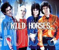 Cover The Rolling Stones - Wild Horses [Stripped]
